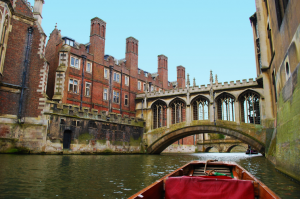 the view from a punt on the river cam in cambridge